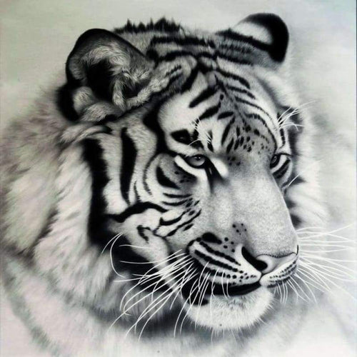 5D DIY Diamond Painting Kits Black And White Cool Tiger