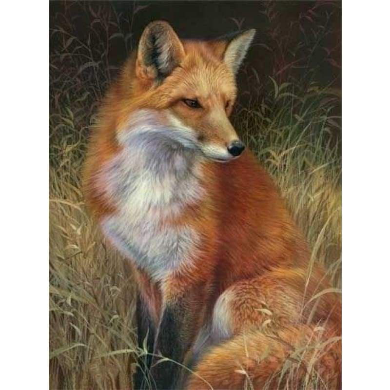 5D DIY Diamond Painting Kits Cartoon Fox - 3