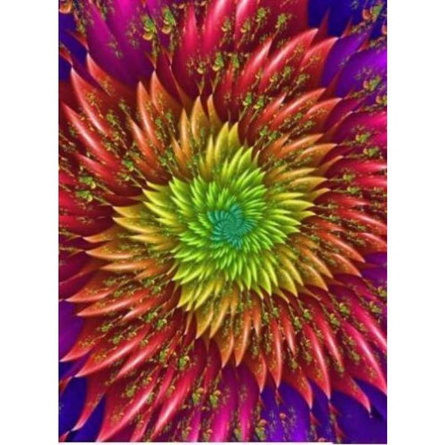 5D DIY Diamond Painting Kits Colorful Abstract Flower - Z3