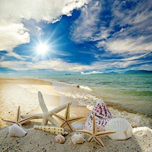 5D DIY Diamond Painting Kits Sunny Seaside Beach Starfish Scene