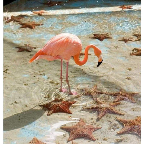 5D DIY Diamond Painting Kits Pink Flamingo Starfish on the Beach