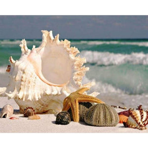 Full Drill - 5D DIY Diamond Painting Kits Shell Starfish Seaside - NEEDLEWORK KITS