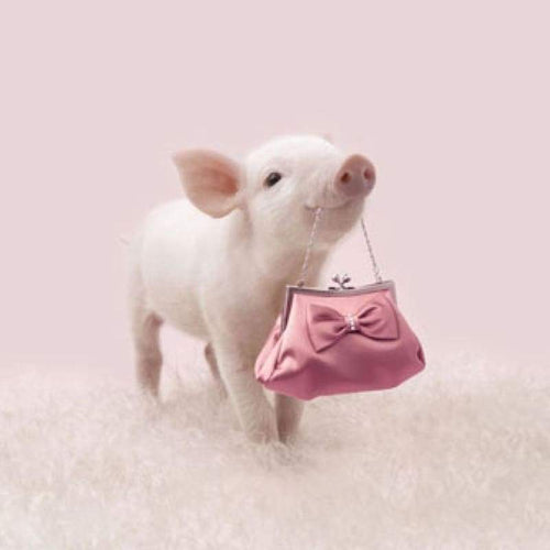 Full Drill - 5D DIY Diamond Painting Kits Funny Cute Pig Pink Handbag - NEEDLEWORK KITS