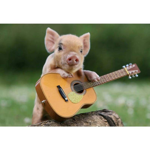 5D DIY Diamond Painting Kits Funny Pig Baby Playing the Guitar - 4