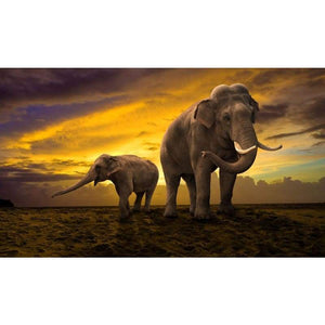 Full Drill - 5D DIY Diamond Painting Kits Sunset Scene Elephant - NEEDLEWORK KITS