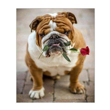 Load image into Gallery viewer, Full Drill - 5D DIY Diamond Painting Kits Cute Pet Dog Flower For Love - NEEDLEWORK KITS