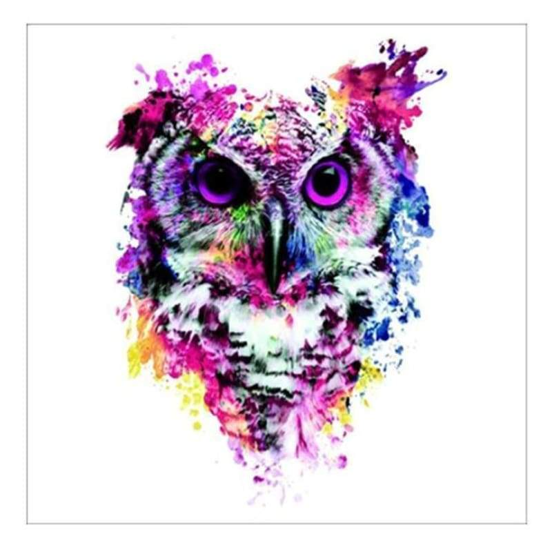 5D DIY Diamond Painting Kits Cartoon Pretty Colorful Owl