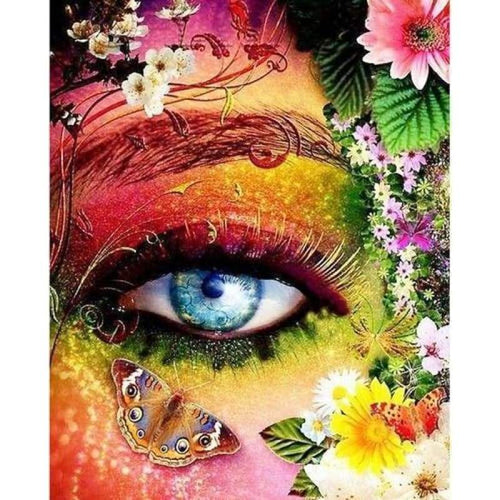 5D DIY Diamond Painting Kits Beautiful Colorful Eyes Butterfly - 3