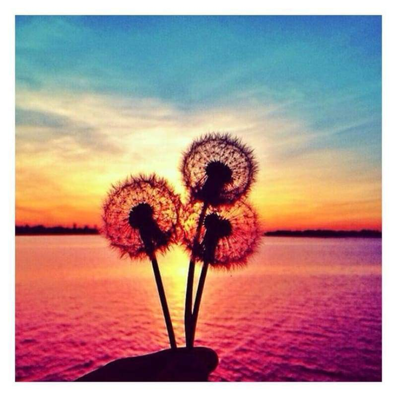 5D DIY Diamond Painting Kits Special Sunset Dandelions Sea