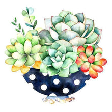 Load image into Gallery viewer, 5D DIY Diamond Painting Kits Cartoon Succulent Pot