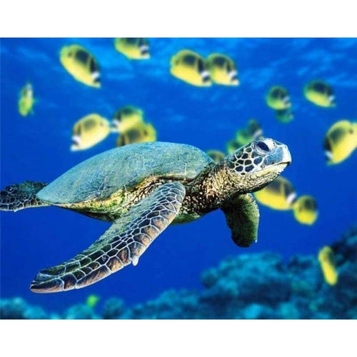 5D DIY Diamond Painting Kits Mosaic Turtle in the Sea - 3