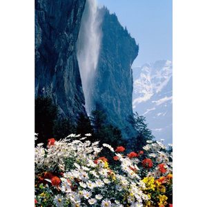 5D DIY Diamond Painting Kits Natural Mountain Flowers - 555