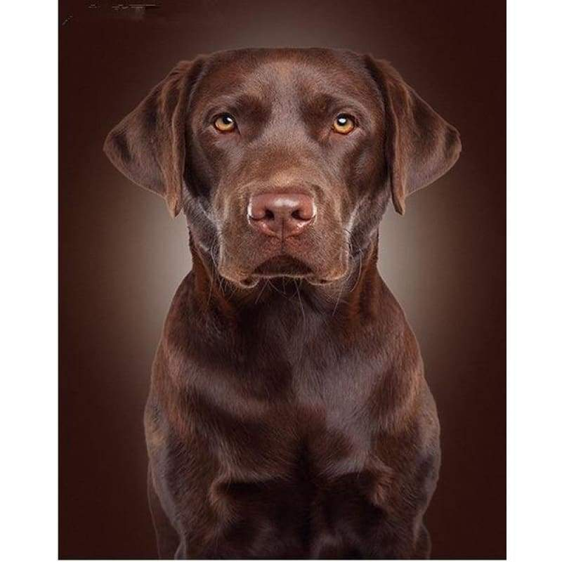 Full Drill - 5D DIY Diamond Painting Kits Pet Cute Black Dog - NEEDLEWORK KITS