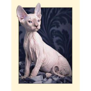 Full Drill - 5D DIY Diamond Painting Kits Cute Sphynx - NEEDLEWORK KITS