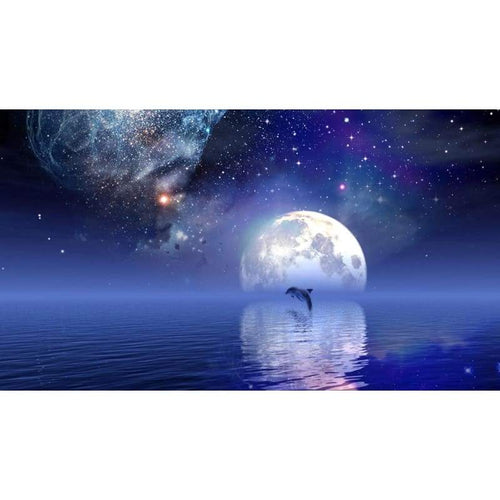 5D DIY Diamond Painting Kits Starry Sky Moon Dolphin - Z5
