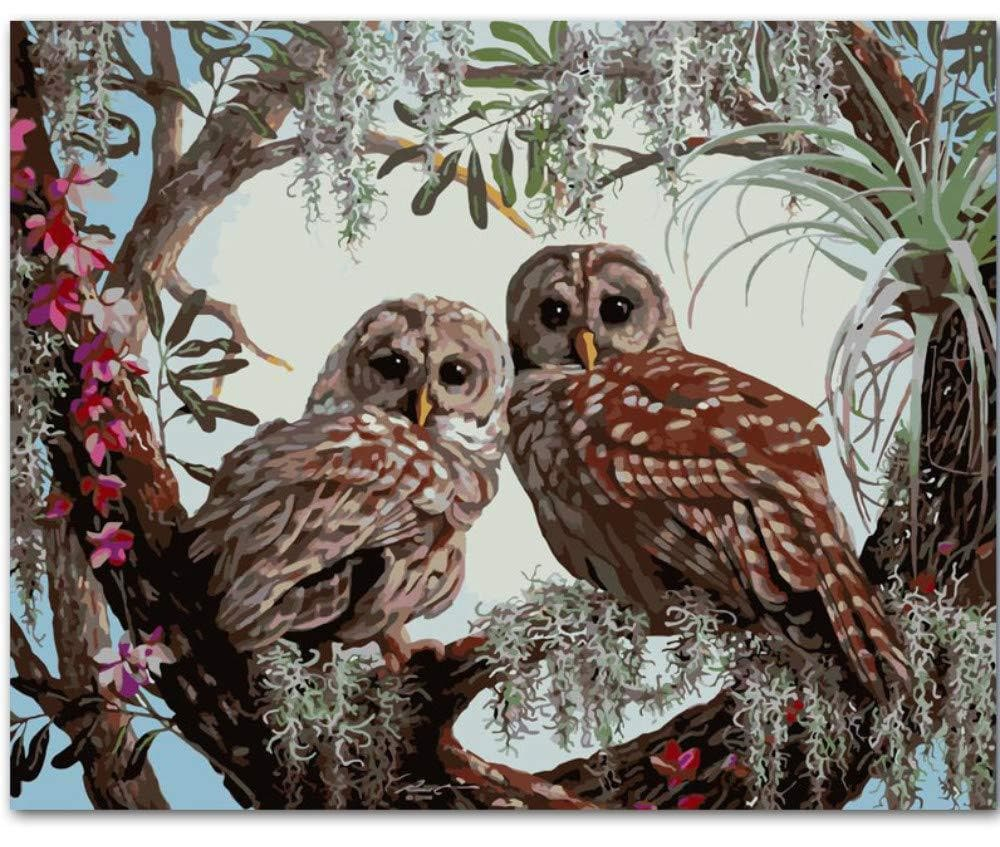 Owl Diy Paint By Numbers Kits VM90236 ZXQ2863 - NEEDLEWORK KITS