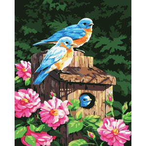 Bird Diy Paint By Numbers Kits PBN92274