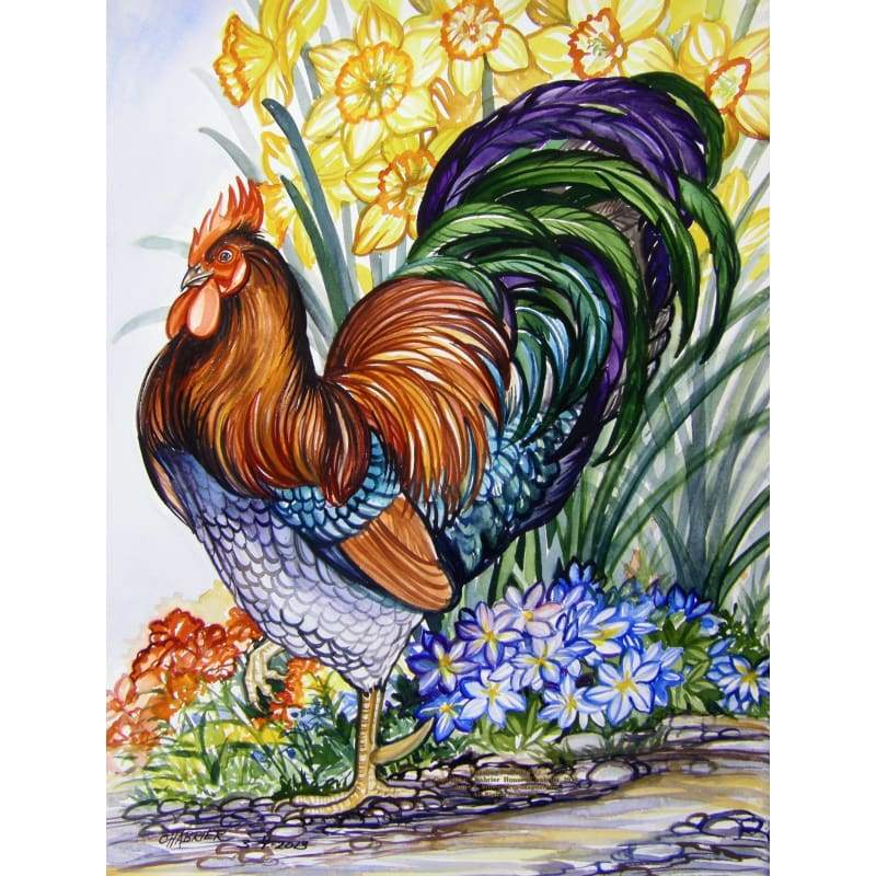 Cock Diy Paint By Numbers Kits PBN95918 - NEEDLEWORK KITS