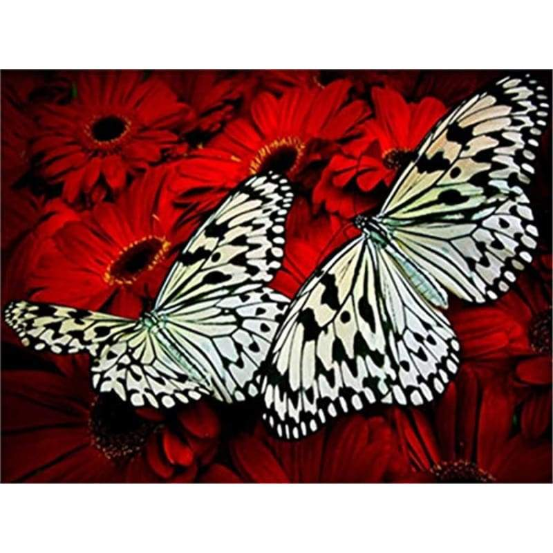 Butterfly Diy Paint by Numbers Kits DIY PBN96419 - NEEDLEWORK KITS