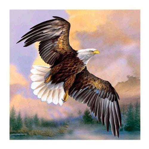 5D DIY Diamond Painting Kits Popular Watercolor Eagle Flying