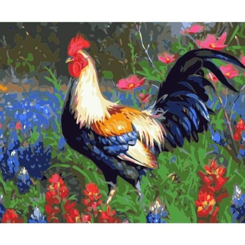 Cock Diy Paint By Numbers Kits PBN97592 - NEEDLEWORK KITS