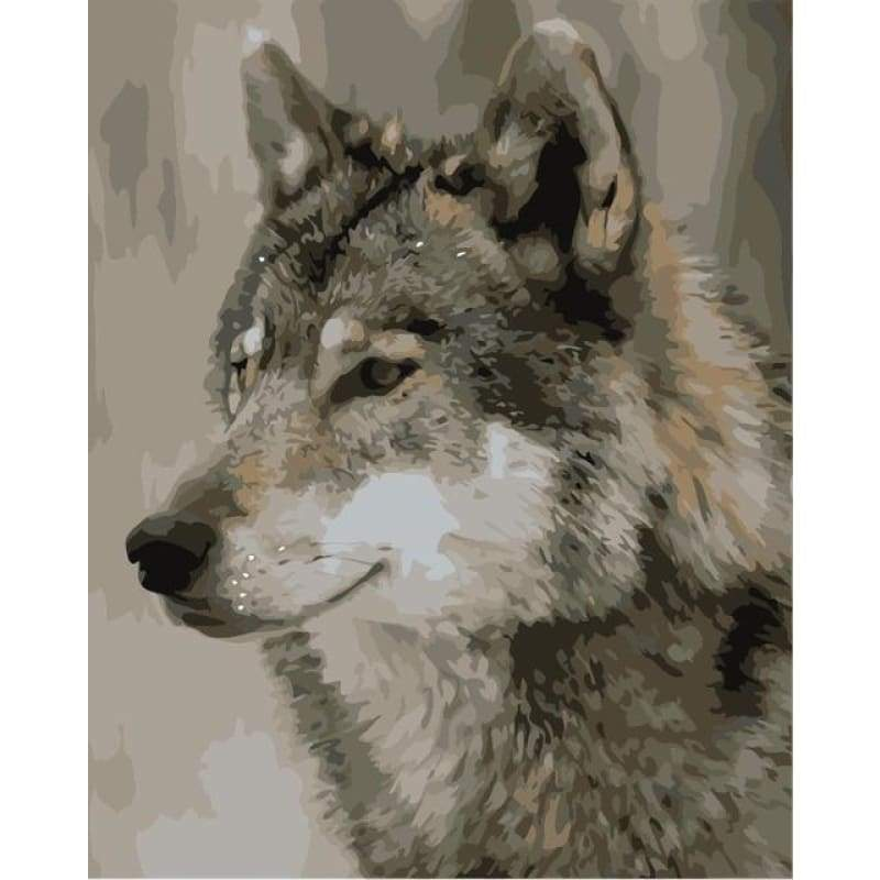 Animal Wolf Paint By Numbers Kits VM90740 - NEEDLEWORK KITS