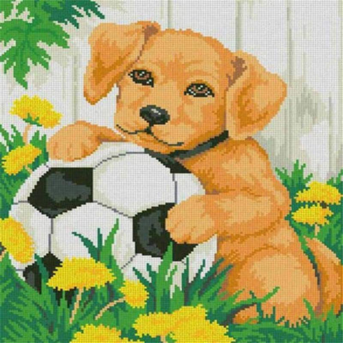 5D DIY Diamond Painting Kits Pet Dog Football in the Grass