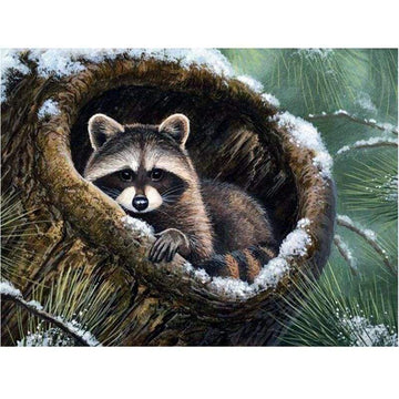 Raccoon Diamond Painting