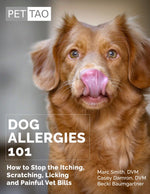 Dog Allergies 101: How to Stop the Itching, Scratching, Licking & Painful Vet Bills - Instant Ebook Download