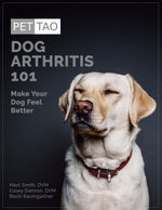 Dog Arthritis 101: Make Your Dog Feel Better - Instant Ebook Download