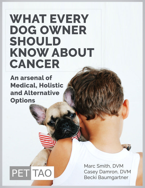 What Every Dog Owner Should Know About Cancer - Instant Ebook Download