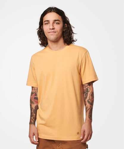 Stance T-shirts Primer Mens Clay