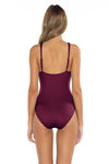 Color Splash Kate One Piece Burgundy Back