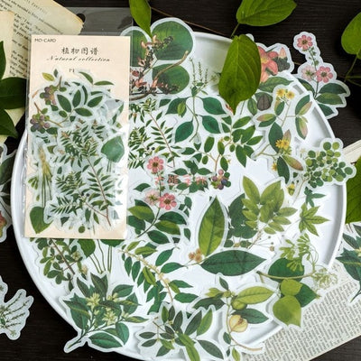 60 Piece Vintage Plant Sticker - Terra Art Shop