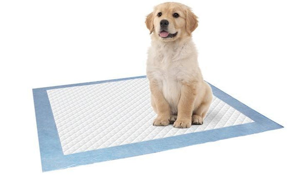 Puppy Training Pads 5 Sheets - Large - Grocery Deals