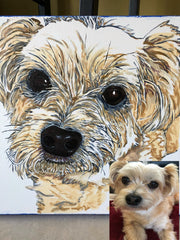 Colleen Brazell Pet Portraiture