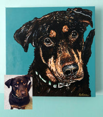 Colleen Brazell Pet Portraiture Rottweiler Acrylic