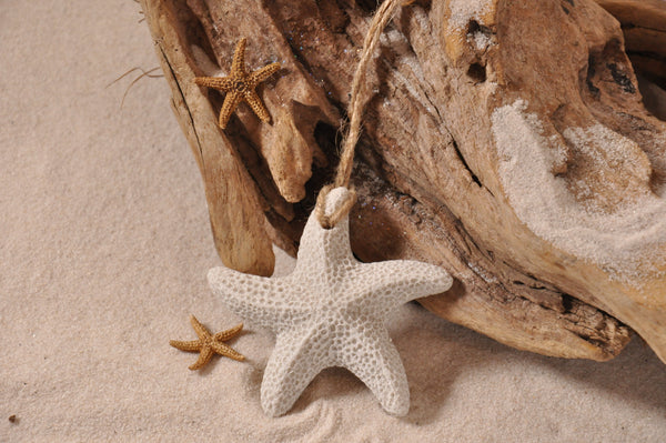 SAND ORNAMENT, CHRISTMAS TREE ORNAMENT, TROPICAL CHRISTMAS DECORATIONS, COASTAL ORNAMENT, SAND ORNAMENT, TROPICAL ORNAMENT, ARENOPHILE, SANTA, CHRISTMAS ORNAMENT, FLORIDA, STARFISH