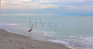 Calm on Captiva Photographic Art Jeanne Schwerkoske