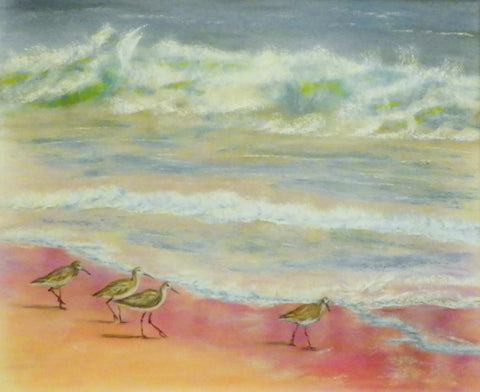 Coral Beach Sandpipers