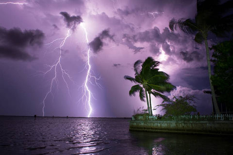 Quinn Sedam Lightning Photography The Palms
