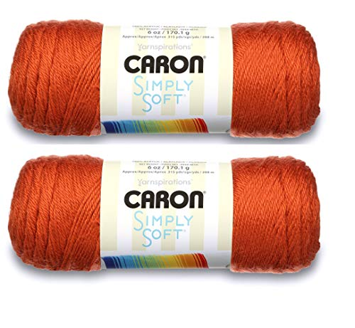 Bulk Buy: Caron Simply Soft Yarn Solids (2-Pack) (Pumpkin)
