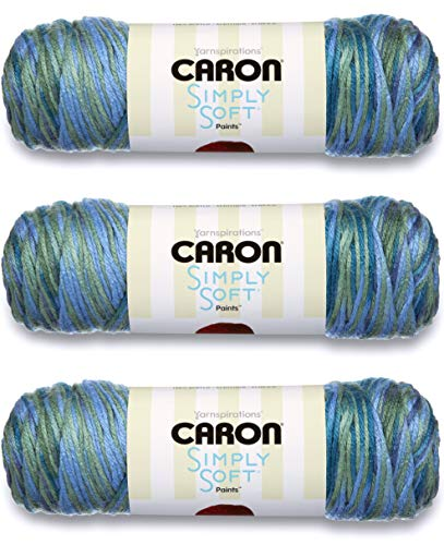 Caron Simply Soft Paints-Pack of 3 Balls-141g Each Ball-Spring Brook