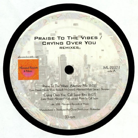Mr. Fingers - Praise To The Vibes / Crying Over You Remixes - Out Of Joint Records
