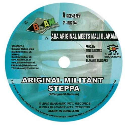 Aba Ariginal meets Mali Blakamix - Ariginal Militant Steppa - Out Of Joint Records