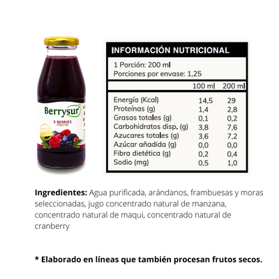 Jugo 5 Berries 250 cc. - Pack 12 unidades