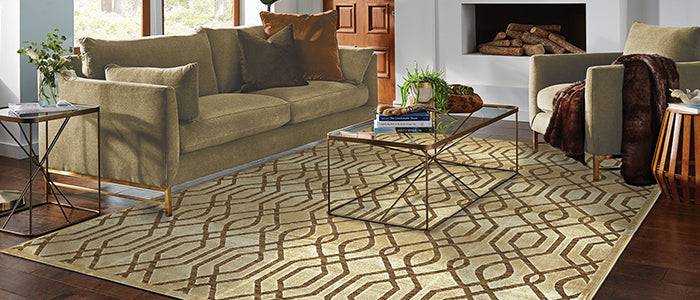 gold transitional rug
