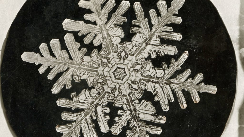 snowflake photograph by wilson bentley