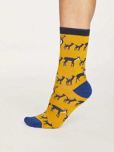 Calcetines Animal Kin 37-41