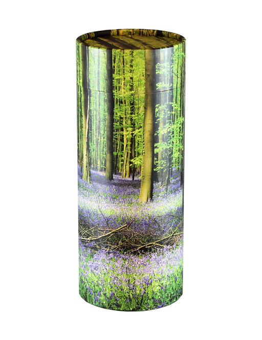 Adult Scattering Tube Bluebell Forest